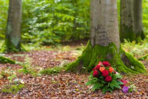 Baum Straß-Abschied nehmen-Bestattungen Bauer Schwäbisch Gmünd